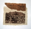 Fynbos pulse     |   2003  |  22x25cm  |  etching, chine collé  |  ed.40